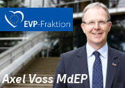 Axel Voss MdEP
