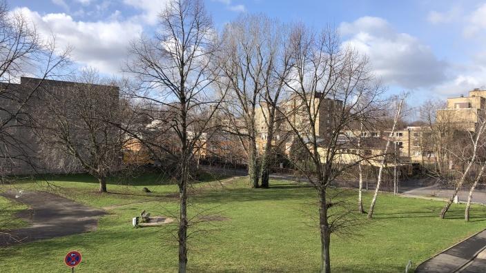 Blick auf die Fläche an der Wilhelm-Rieländer-Straße
